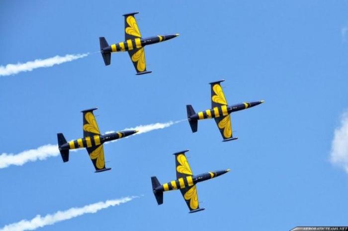 baltic-bees-l-39-01
