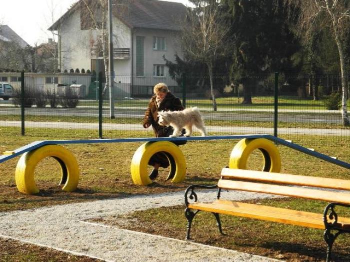 prvi psi u parku